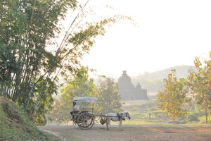 Exposition : Arakan, une Birmanie oubliée